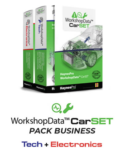 Pack Business - Haynes Pro